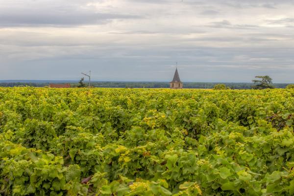Bourgogne 2011