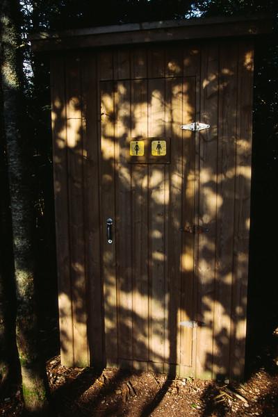 Bécosse sur le sentier du mont Saint-Alban - Parc Forillon, Gaspésie