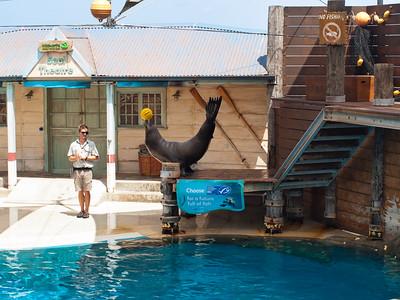 20140201 Taronga Zoo
