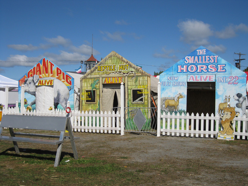 Sideshows: The Giant Pig (Alive), Reptile Hut (Alive), The Smallest Horse (Alive)