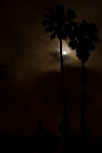 Moon Night_08-7.jpg
