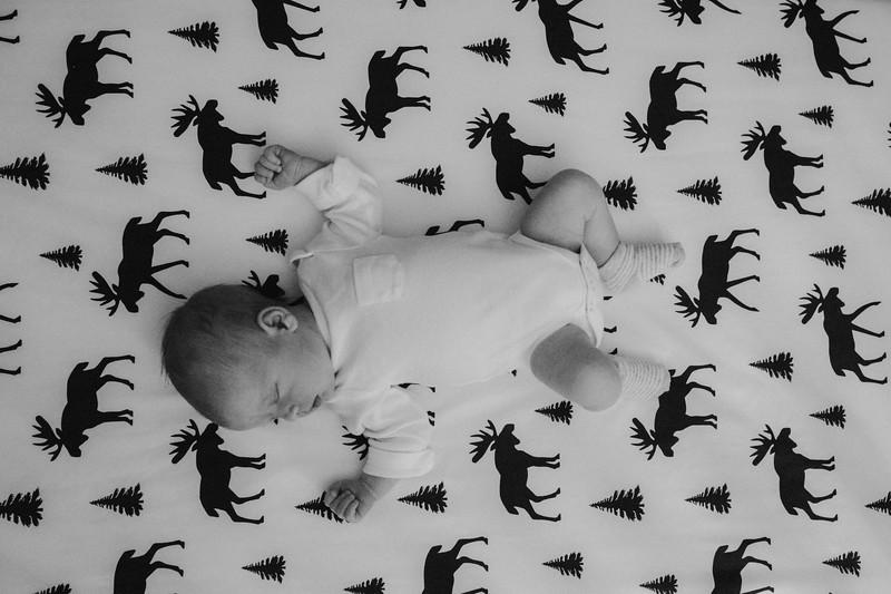 newborn-514edit.jpg