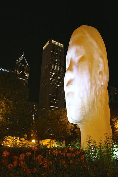 Chicago2014 190