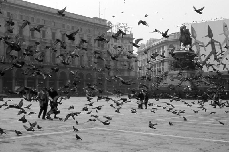 Pigeons - Piazza del Duomo, Milano, Italy - 1991
