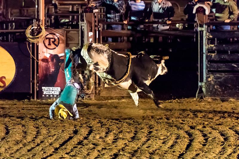 big-cedar-rodeo-280.jpg