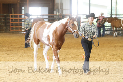 Day 1 - Showmanship