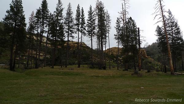 Ventana Wilderness Pine Valley Backpack (04.09-10.2010)
