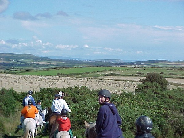Darcy on Horse in Wales.JPG