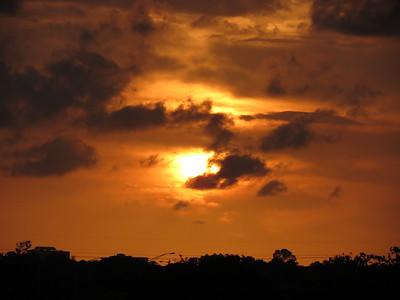 Florida Everglades April 16-18 2015