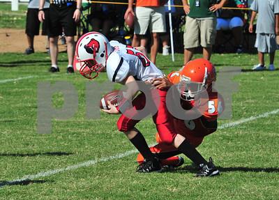 Chandler Youth Football CYF911