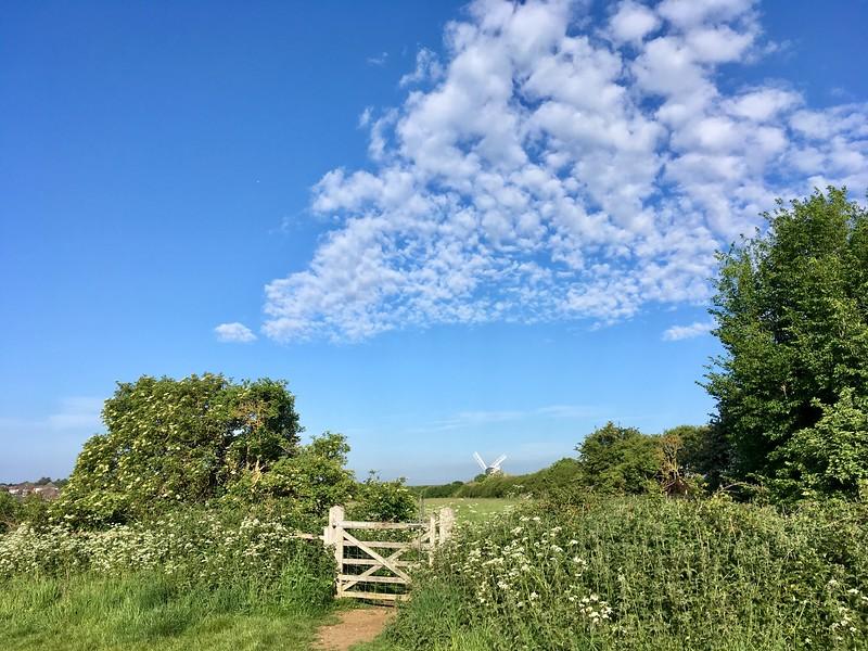 Green Ridge morning clouds