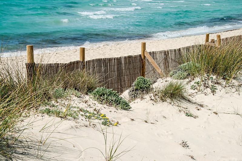 Es Trenc Beach Mallorca 5.jpg