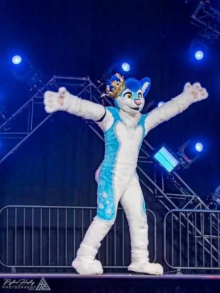 MFF 2018 Dance Comp-2459.jpg