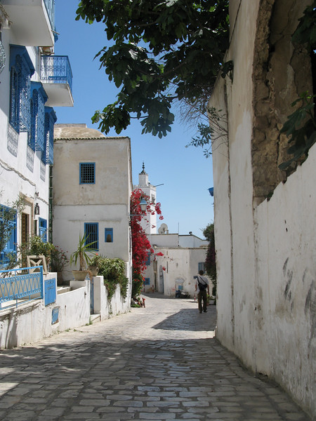 Sidi Bou Said Street scene.jpg