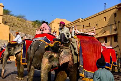 Day 10 & 11 & 12 Jaipur