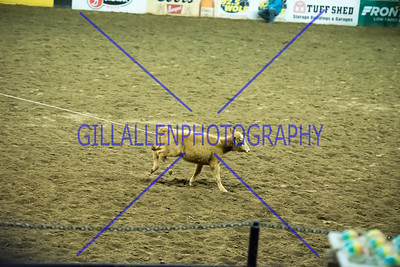 2016 NWSS Rodeo 17th 3:30