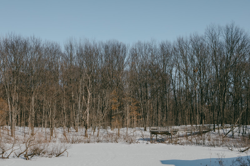 AVS_EcoPreserve_Winter2021-26.jpg