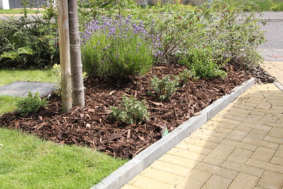 Front Garden Works - 2 to 14 July 2016