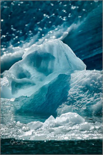 SR3__1887 ice berg cropped portrait LPN W.jpg