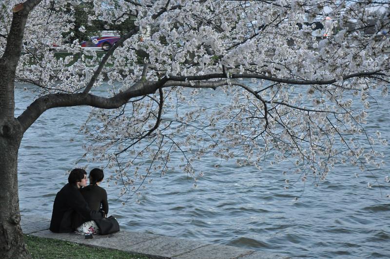 photo walk 4-3-09 228.jpg