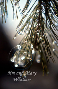 Winter_012