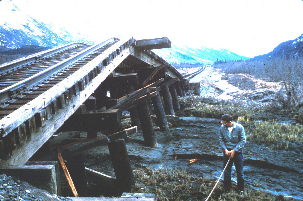 . Alaska Earthquake March 27, 1964. This railroad bridge on the Kenai Peninsula was strongly compressed by channelward movement of the stream banks during the earthquake. The bridge buckled vertically, producing a sharp hump in the roadbed and lifting some of the bridge piling with it. U.S. Geological Survey photo