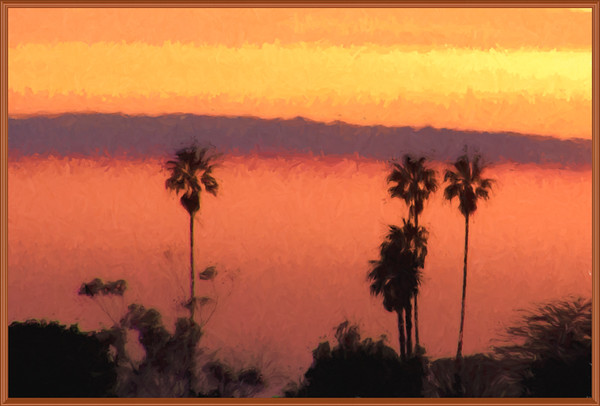 February 4 - Palms basking in sunset light.jpg