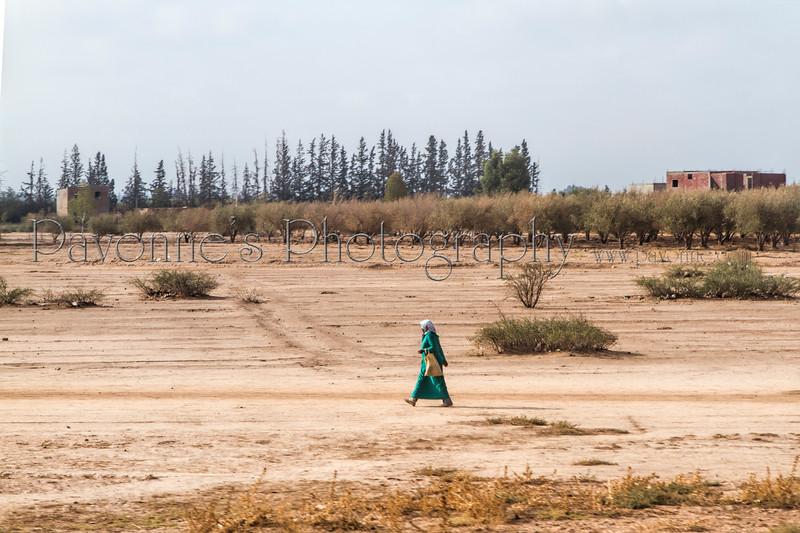 Morocco 1b 0802.jpg