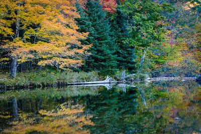 Crawford Notch State Park, NH
