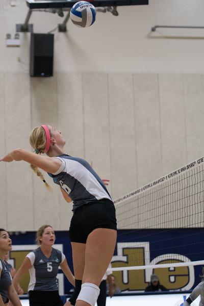 HPU Volleyball-91827.jpg