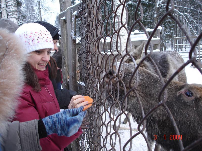 2008-12-31 НГ Кострома 65.JPG