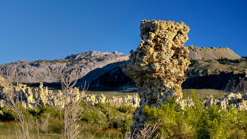 Mono lake South Tufa 4.jpg