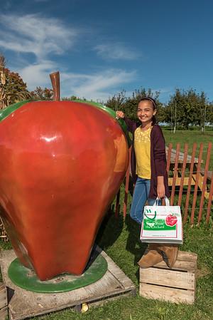 2017-09 Sekapp Apple Orchard