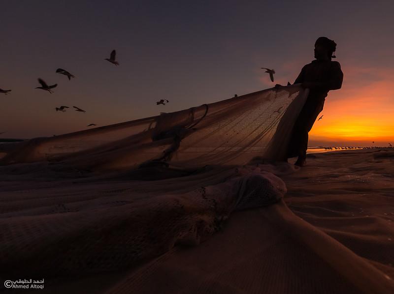 Sardine Season (61)- Dhofar.jpg