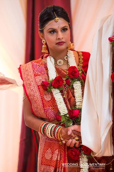 Rajul_Samir_Wedding-540.jpg