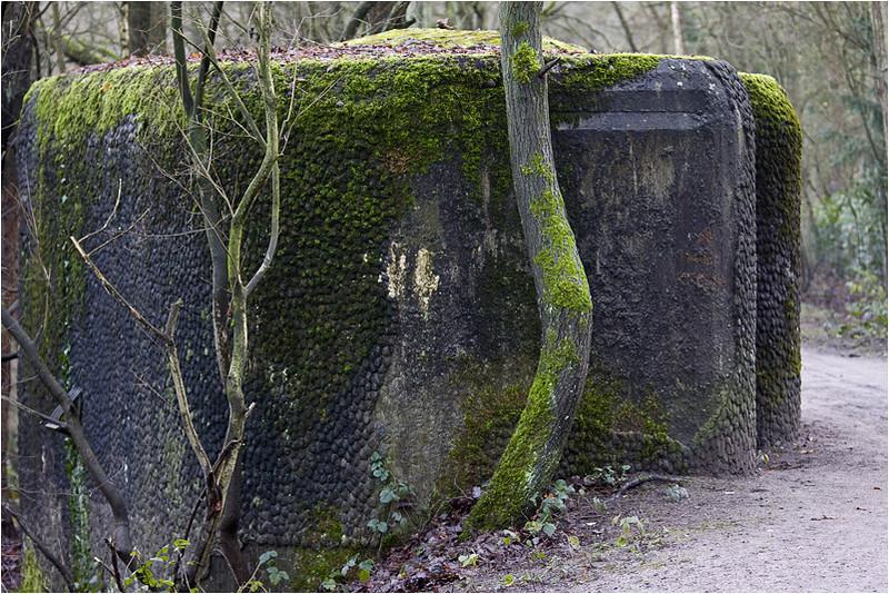 Bunker (langs het anti-tankkanaal)