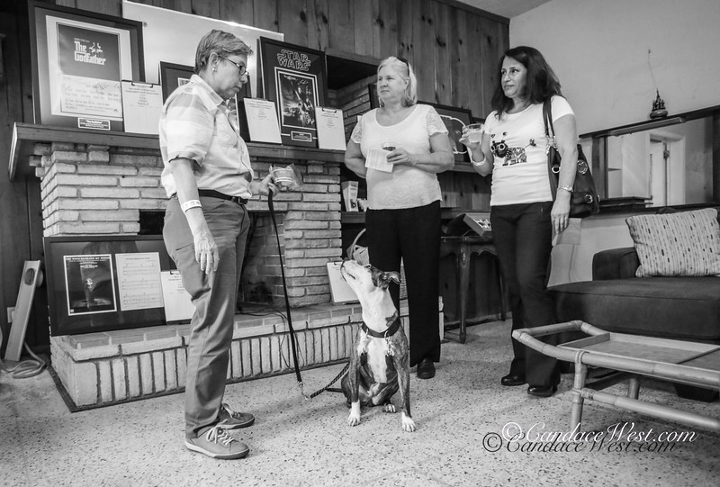 Night Out For Pets, Saturday May 19, 2018.  The Pet Project Annual Buffet Dinner, Cash Bar and Silent Auction fundraiser. The Pet Project nonprofit enables those who are financially challenged due to illness, disability or aging to keep their pets through assistance.   Photos by CandaceWest.com