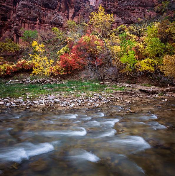 Zion_Virgin_River_Fall__Panorama1.jpg