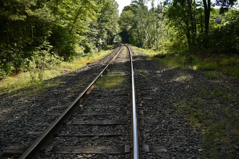 2019_06_26 CS Trail (4).JPG