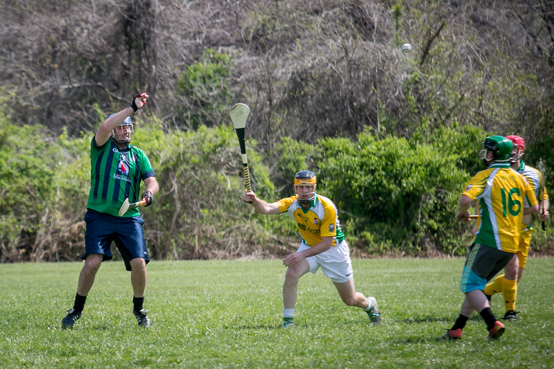 Hurling, AOH St. Charles, Tigin, 2017 (117 of 325).jpg