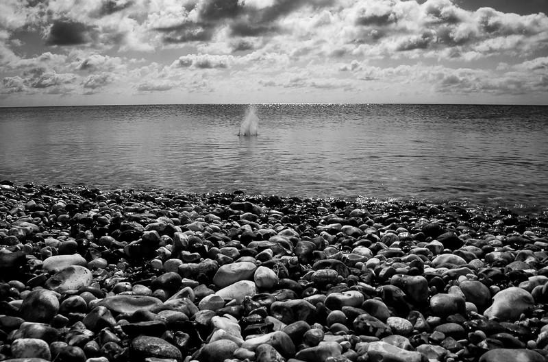 a-drop-in-the-ocean---selsey-2015_20038537376_o.jpg
