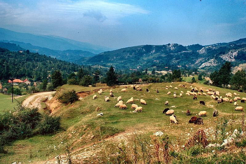 700905 Rural Romania 24.jpg