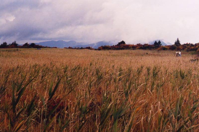 Iwate-ken