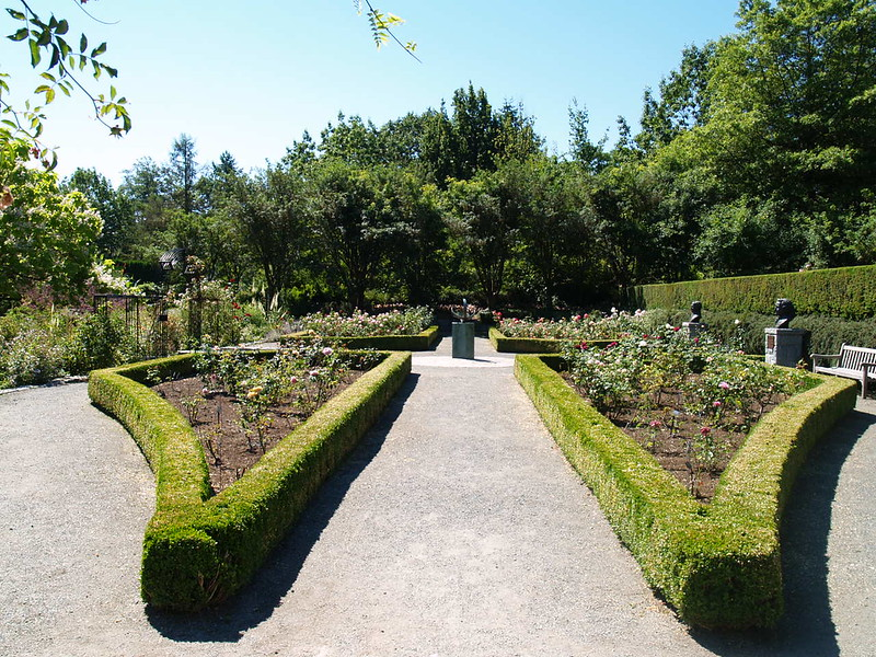 A formal rose garden at Van Dusen (2006).