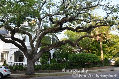 Charleston-Savannah 2014