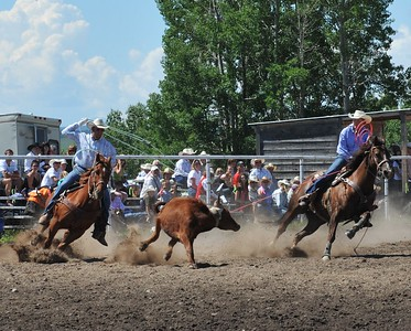 Team Roping (Section 1)