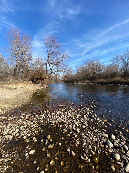 Boise River in the Fall