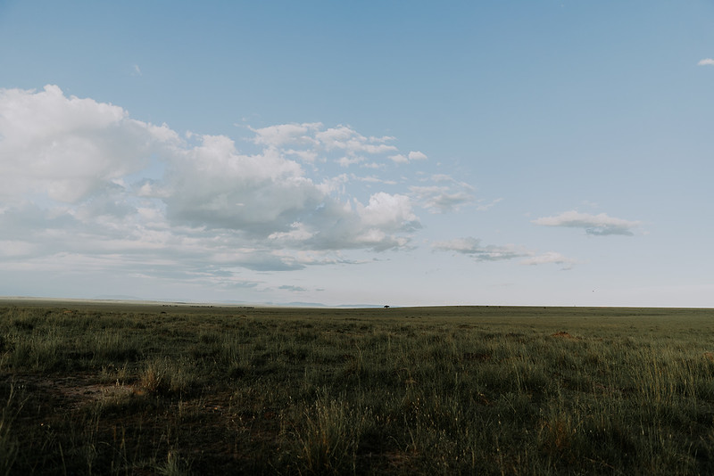 Tu-Nguyen-Destination-Wedding-Photographer-Kenya-Masai-Mara-Elopement-Doris-Sam-464.jpg