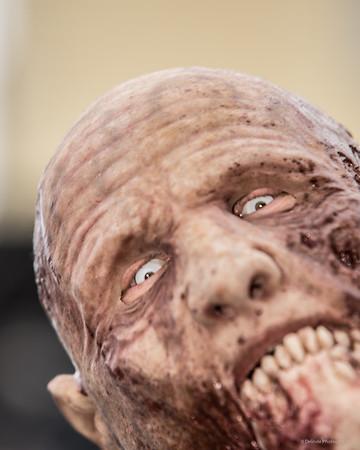 2015 Carytown Zombie Walk