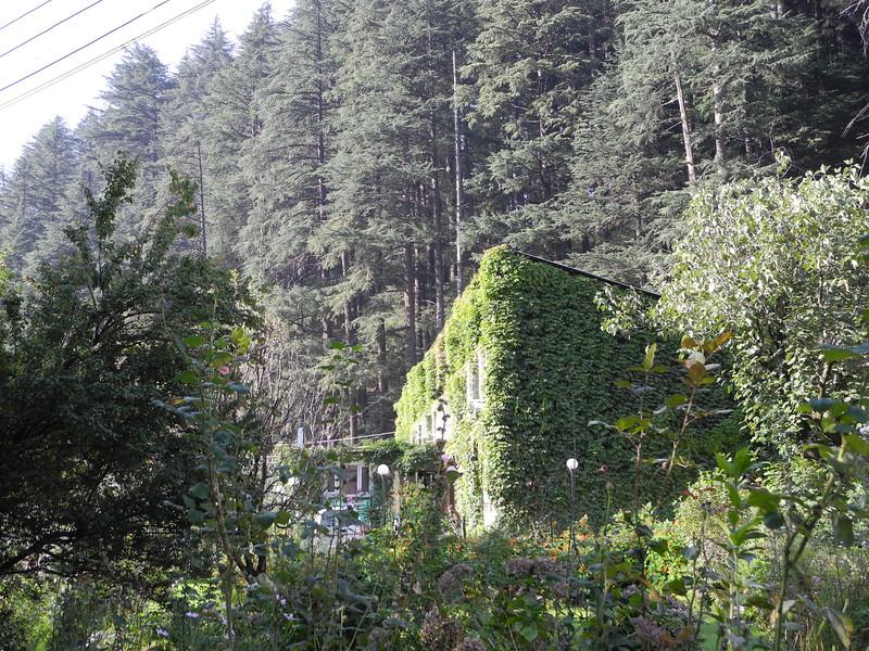 india2011 638.jpg